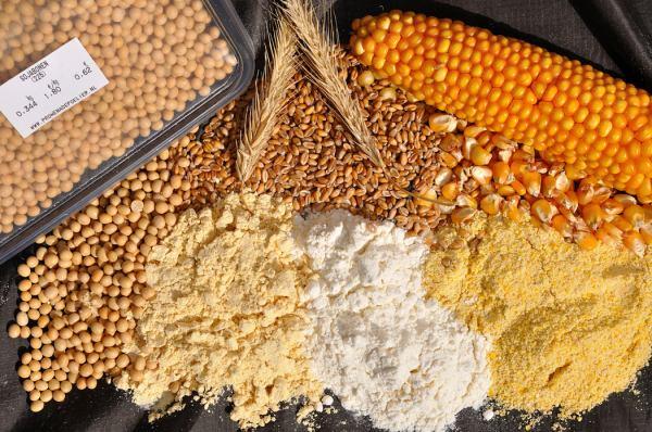 Voeg je bovenstaande drie producten bij elkaar in gelijke delen, dus een maïs, soja en een tarwe product, dan heb je een simpele maar goede basis-mix. Waar je zonder problemen 20 a 30 procent vismeel, vleesmeel, of vogelvoer aan kan toevoegen.
