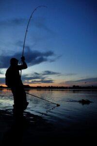 karper rigs voor het obstakelvissen